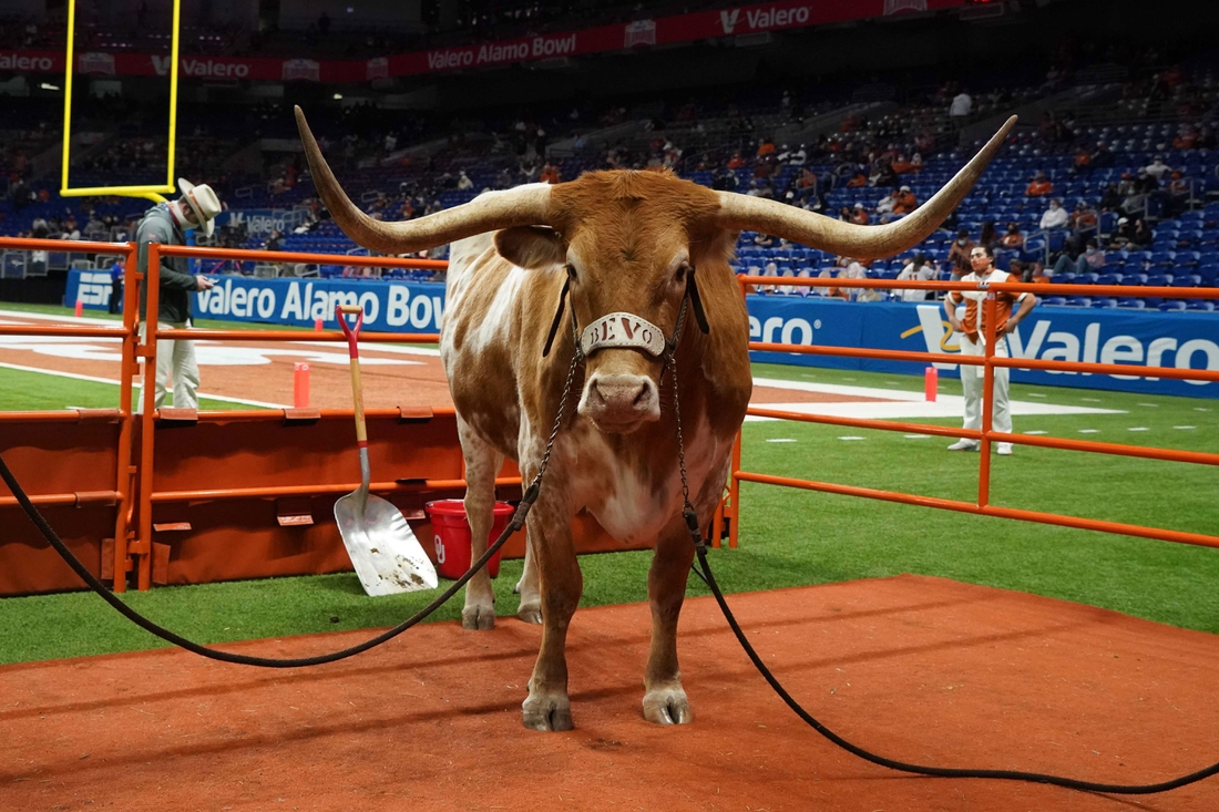 Dec 29, 2020; San Antonio, TX, USA; Texas Longhorns mascot Bevo XV during the Alamo Bowl against the Colorado Buffaloes at the Alamodome. Mandatory Credit: Kirby Lee-USA TODAY Sports